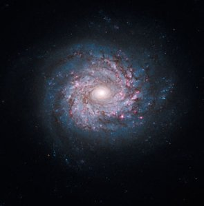 Face-on Spiral Galaxy NGC3982