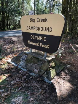 Big Creek Campground in Olympic National Forest